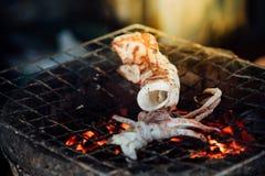 Calamaro arrostito o polipo al mercato tailandese dei frutti di mare Immagine Stock