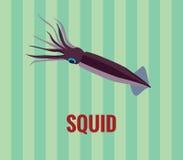 Calamaro - attingere fondo verde Fotografia Stock