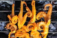 Calamaro cotto fotografia stock libera da diritti