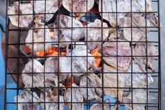 Calamaro cotto Fotografie Stock