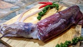 Calamaro fresco con Libro Verde ed i peperoncini rossi su legno Immagine Stock Libera da Diritti