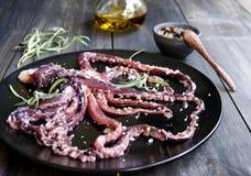 Calamaro fresco con un asparago Fotografie Stock Libere da Diritti
