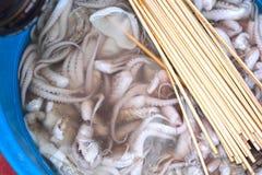 Calamaro fresco nel mercato con gli spiedi Immagini Stock Libere da Diritti