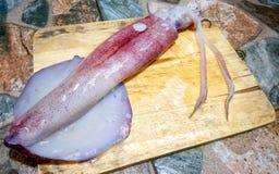 Calamaro fresco su legno Immagine Stock Libera da Diritti