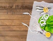 Calamaro fresco sulla tavola di legno Fotografie Stock Libere da Diritti