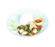 Calamaro fritto su bianco Fotografia Stock