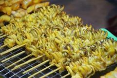 Calamaro tentacled con legno ed allora cucinato Fotografia Stock Libera da Diritti
