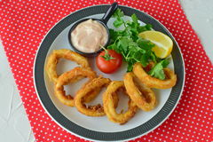 Calamary rings fried with spicy souce and rocca. Mediterranean lifestyle. Healthy food.  Royalty Free Stock Photos