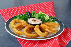 Calamary rings fried with spicy souce and rocca. Mediterranean lifestyle. Healthy food.  royalty free stock photo