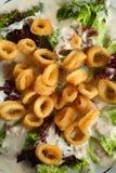 calamary snittstycken till Royaltyfri Fotografi