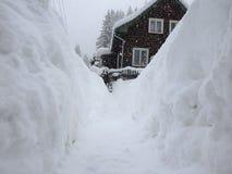 Calamidade extrema da neve fotografia de stock royalty free