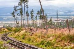 Calamidade no parque nacional alto de Tatras, Eslováquia da floresta fotografia de stock royalty free
