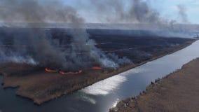 Calamité de nature, grandes flammes rapides par le pré sec avec de la fumée noire montant au ciel près de la rivière, levé aérien banque de vidéos