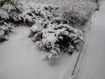Calamité de neige dans une rue de ville image stock