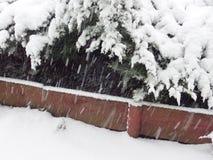 Calamité de neige dans une rue de ville images libres de droits