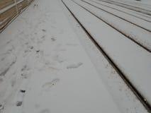 Calamité de neige dans une rue de ville photo libre de droits