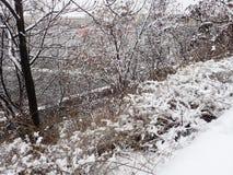 Calamité de neige dans une rue de ville photos libres de droits