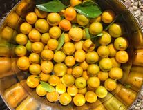Calamondin oranges Stock Photo