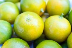 Calamondin Oranje Vruchten royalty-vrije stock foto