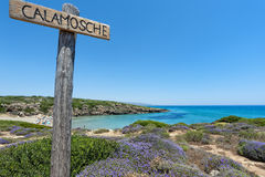 Calamosche beach in Sicily Italy Stock Image