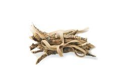 Calamus Root or Sweet Flag Stock Photo