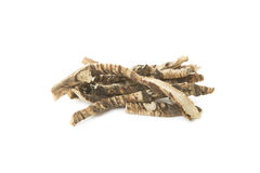 Calamus Root or Sweet Flag Royalty Free Stock Photography