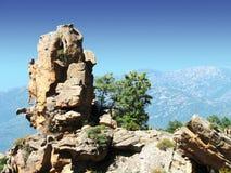 calanches Corsica piana s Obraz Royalty Free