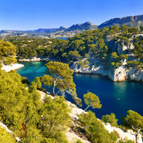 Calanque  of Cassis Royalty Free Stock Photo