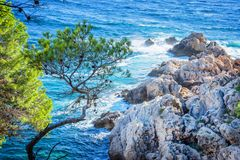 Calanque between Cassis and Marseille France Stock Image