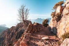 Calanques de Piana in Korsika, Frankreich Lizenzfreie Stockfotografie