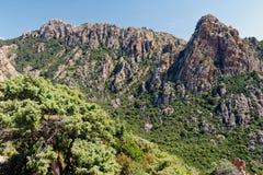 Calanques di Piana / Calanques of Piana 01. Landscape park Calanques near Piana, Corsica. Fantastic pink, red an grey rock formations. Amazing place, you can stock photography