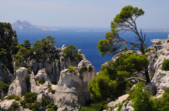 Calanques do Pin do porto no cássis Fotografia de Stock