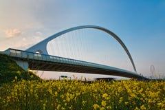 calatrava γεφυρών Στοκ Φωτογραφίες
