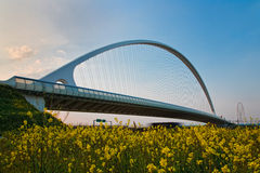 Calatrava Bridge Stock Photos