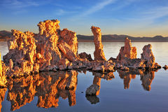 The calcareous tufa formation Stock Photography