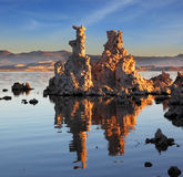 The calcareous tufa formation Stock Image