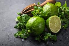 Calce e menta verdi fresche su fondo nero, immagini stock
