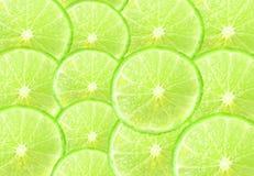 Calce fresca Fotografie Stock