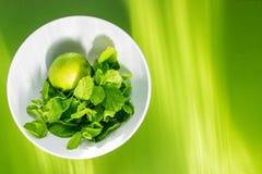 Calce fresca con la menta in tazza bianca su verde immagini stock