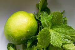 Calce fresca con la menta in tazza bianca su verde fotografia stock