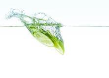 Calce fresche in acqua Immagini Stock Libere da Diritti