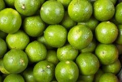 Calce verde Immagini Stock Libere da Diritti