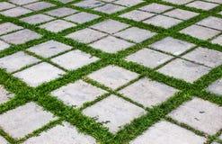 Calcestruzzo con il pavimento dell'erba Fotografie Stock Libere da Diritti