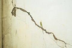 Calcestruzzo incrinato di struttura del muro di cemento Immagini Stock