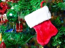 Calcetín de la Navidad en el árbol Foto de archivo