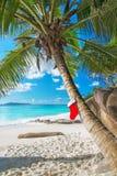 Calcetín de la Navidad en la palmera en la playa tropical exótica Foto de archivo libre de regalías