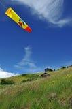 Calcetín de viento en prado alpestre fotos de archivo libres de regalías