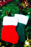 Calcetines de la Navidad en el árbol Imágenes de archivo libres de regalías