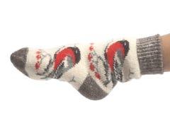 Calcetines de las lanas en los pies de la mujer aislados en el fondo blanco foto de archivo libre de regalías