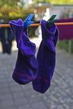 Calcetines en la cuerda para tender la ropa Imagen de archivo libre de regalías
